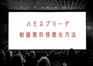 ハモネプリーグの動画を無料で見れる動画配信まとめ!2019年の芸能人回は?
